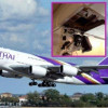 Thirty passengers and fifteen crew members injured on board Thai Airways Flight