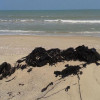 Tar like substance washing up on Samui beaches thought to crude oil