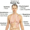 Swine flu responsible for 24 deaths in Thailand so far this year