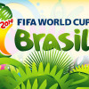 Consular statistics for the World Cup in Brazil 2014