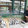 Tiger mauls Australian tourist at Tiger Kingdom