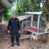 Police and DNP officials raided several houses on Koh Samui for illegal wildlife