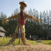 Scarecrow making contest held in Chiang Rai
