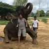 "Famous tsunami ""miracle"" elephant now living in Kanchanaburi"