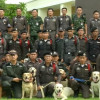 Region 5 Police honour 111 drug sniffing dogs