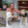 "Meet ""Jao Yo"" the Thai dog who knows no fear!"