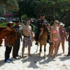 Phuket police mount horses for tourists' safety