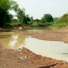 Thailand struggles with drought nationwide, mass fish deaths