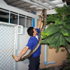 Barking dog alerts Pattaya house owner to four meter python in the roof