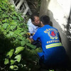 Phuket drunk rescued after falling in ditch while taking a pee