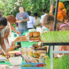 THE GREEN MARKET SAMUI – 13TH AUGUST – it's more than a market, it's a get-together..