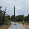 Power pole left in the middle of the road – but nobody mentions it might be dangerous