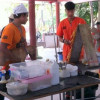 Soi Dog Foundation come to Samui to deal with the islands stray dog problem