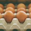Commerce Ministry to tackle falling egg prices