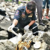 Human remains found washed up on Sattahip rocks
