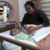 Another small child savaged by dogs – three year old in serious condition in hospital