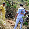 Hua Hin: Thai woman trampled to death by elephants on her way to do the washing