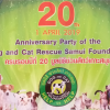 20th Anniversary of the Dog and Cat Rescue Samui Foundation on the 1st APRIL 2019
