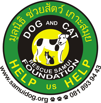 We are celebrating our 19th Anniversary of the Dog and Cat Rescue Samui Foundation on the 1st APRIL 2018 | Samui Times