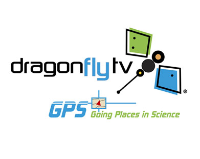 Dragonfly TV on the lookout for tourists visiting Samui for a TV show at Christmas | Samui Times