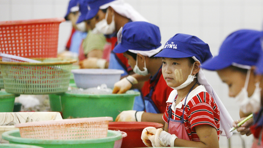 Thailand's fairytale economy is reliant on migrant workers | Samui Times