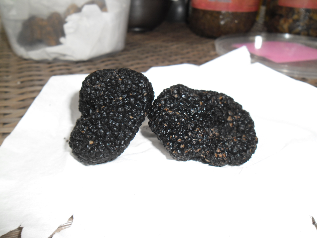 November the 14th is Truffle night at the Napasai by Orient Express, but what is a truffle? | Samui Times