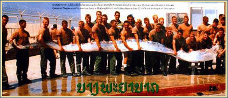 The famous Queen of the Nagas photo hoax   Samui Times