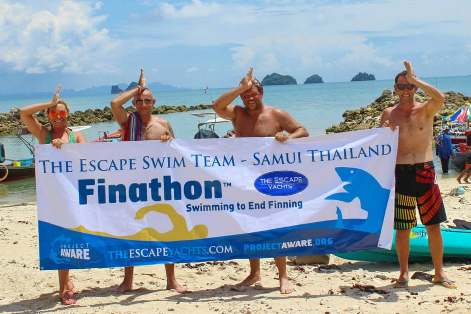 Escape Yachts raise awareness and money for sharks by joining the Project AWARE Finathon | Samui Times