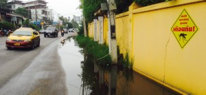 Mosquito Breeding Ground in Chaweng