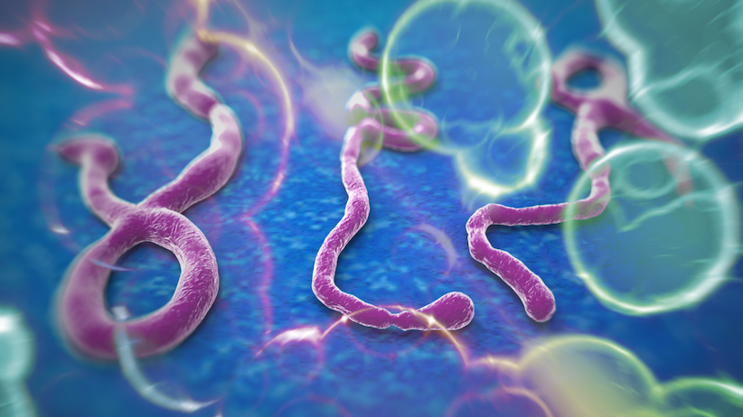 Thailand is still free from Ebola | Samui Times