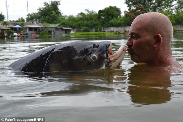 Briton on holiday in Thailand catches 10 stone carp using a piece of bread | Samui Times
