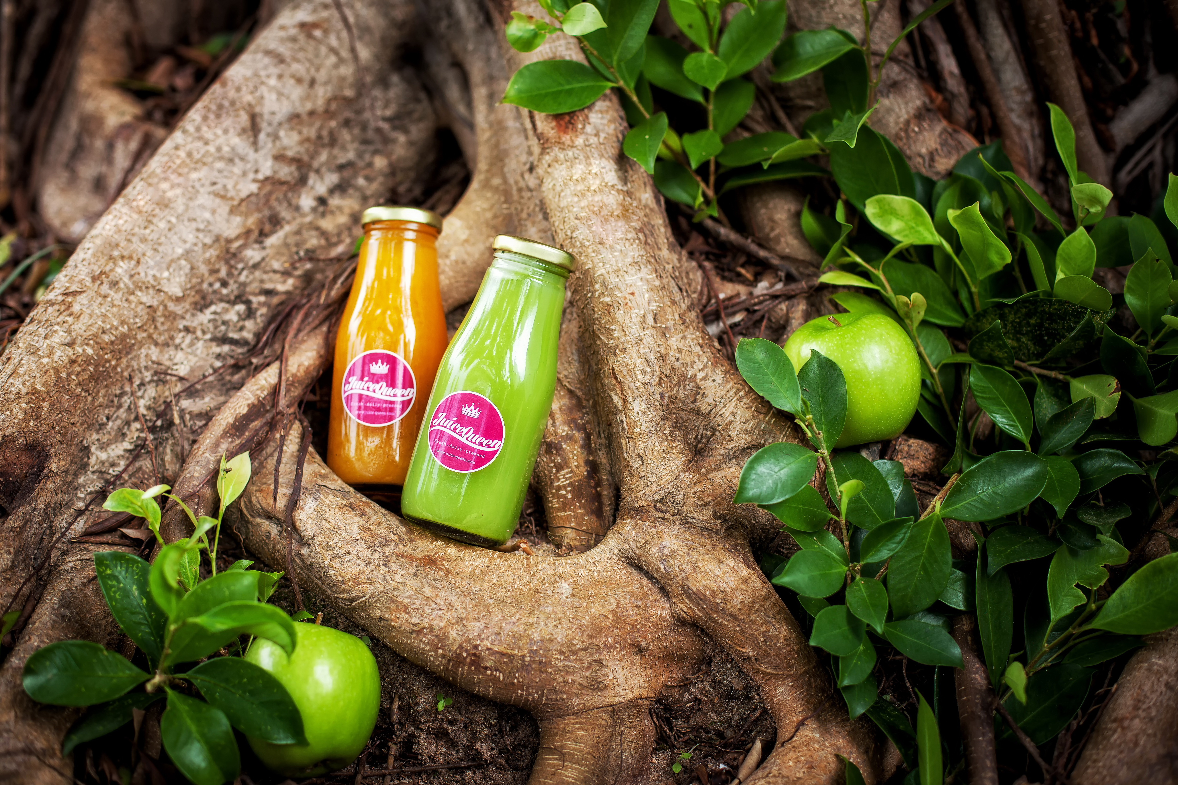 How Juice Cleanse gets your health back on track by Juice Queen | Samui Times