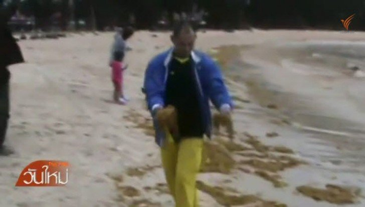 Palm oil spills threaten Narathat beach in South | Samui Times