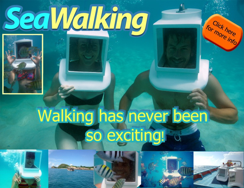 Seawalking, a new and exciting way to discover Samui below the water line | Samui Times