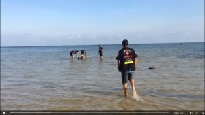 Body washes up in Koh Samui