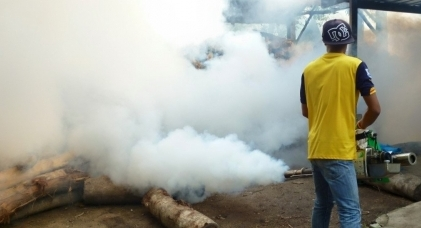 Foreigners not warned about dengue, says Phuket Poll | Samui Times