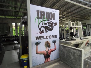 Iron Gecko gym 1