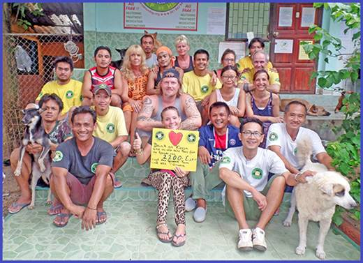 News from the Dog and Cat Rescue Samui Foundation | Samui Times