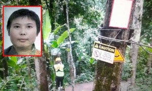 zip line death in Chiang Mai