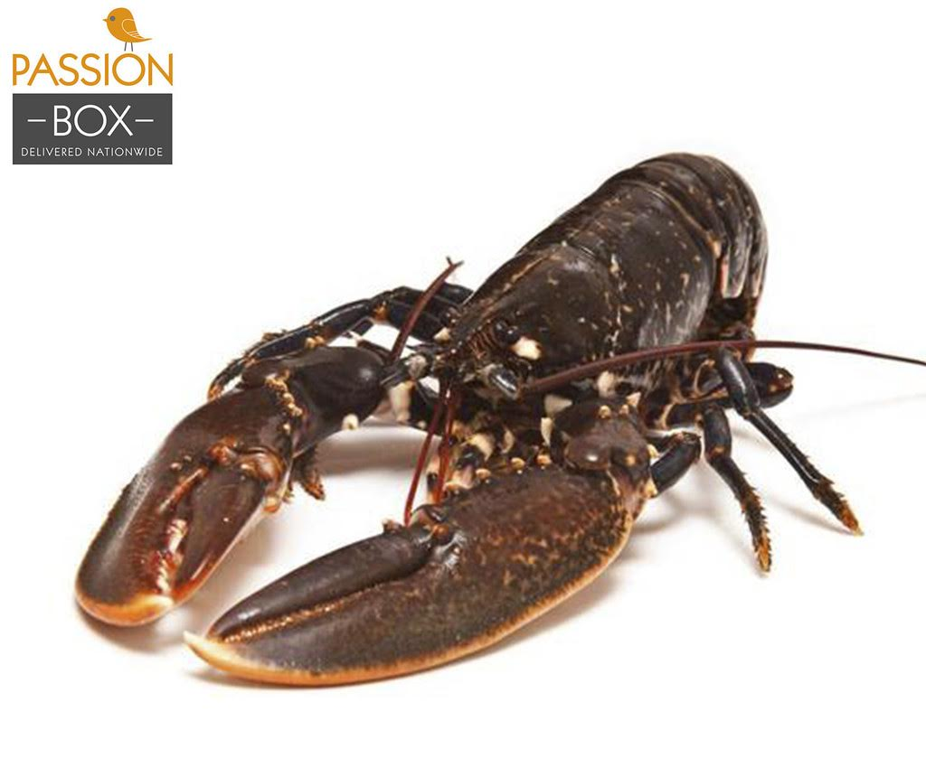 FREE Atlantic Lobster (worth 700 baht) with every Wagyu Purchase at Passion Delivery! | Samui Times