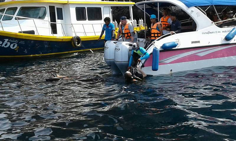 Captain of diver slashing speedboat charged | Samui Times