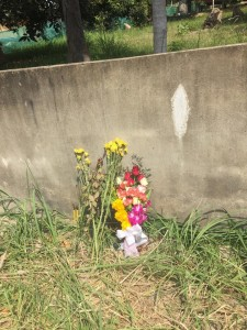 flowers placed by family at the crash site