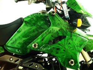 custom bike rasta 1
