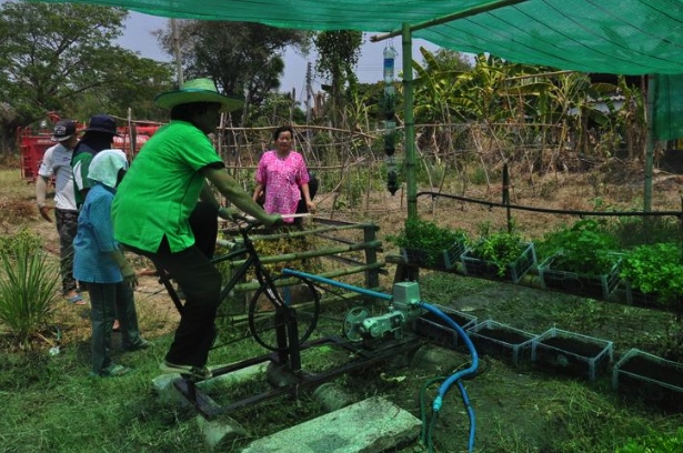 "Chiang Mai village ""cycles"" for fresh veg! 