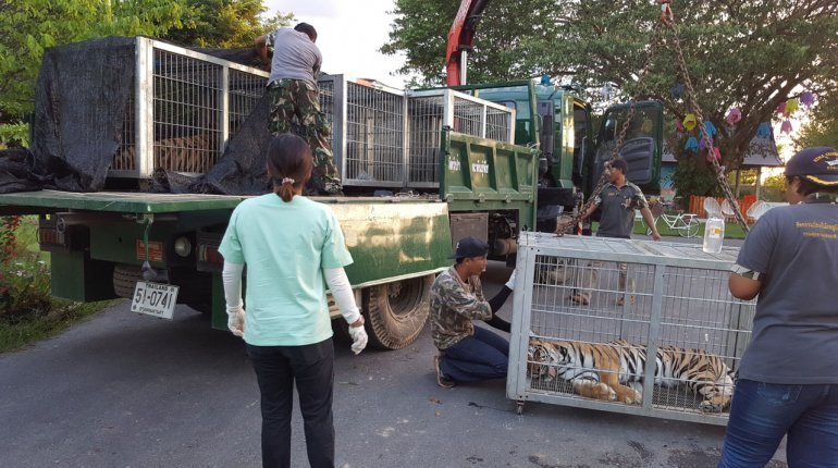 Hua Hin Zoo raided – animals taken away to sanctuaries | Samui Times