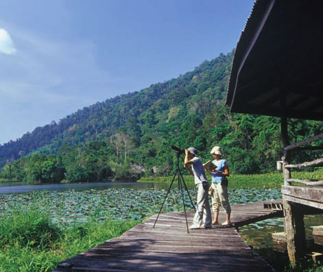 Holidaymakers urged to visit Thale Ban National Park in Satun | Samui Times