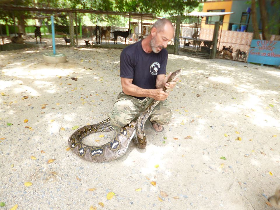 """Samui Snake and Wildlife Rescue faces a lack of funds"" 