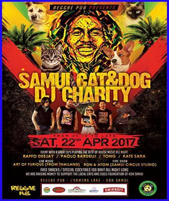 Dog and Cat Rescue Samui Foundation May 2017 | Samui Times