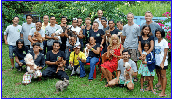 Dog and Cat Rescue Samui Foundation Info Samui July 2017 | Samui Times