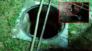 Four year old killed as she tumbles down uncovered drain   News by Samui Times